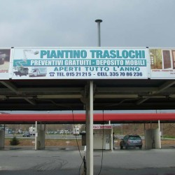 Piantino1
