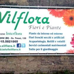 Vilflora1