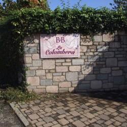 DSCF2457 sito